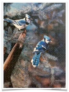 ARTIST-KEVIN-DANIELS-Blue-Jays-500-Pieces-Sure-Lox