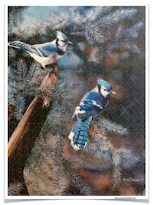 ARTIST-KEVIN-DANIELS-Blue-Jays-500-Pieces-Sure-Lox