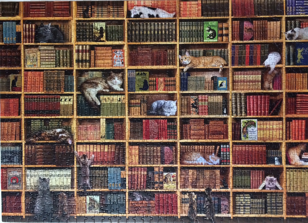 Cat-Library-puzzle
