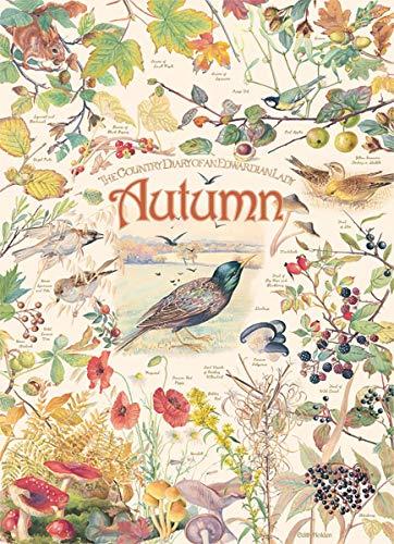 Country-Diary-Autumn