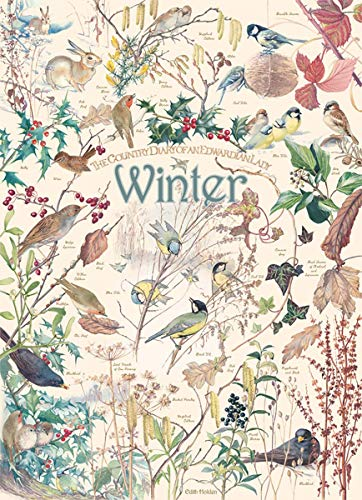 Country-Diary-Winter