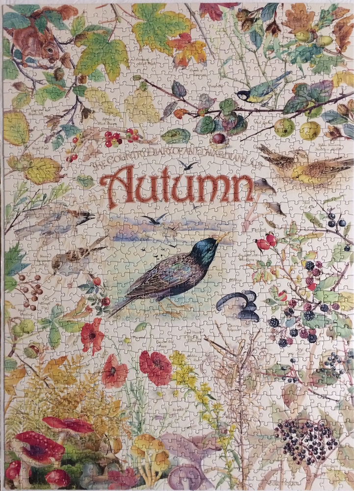 Brand: Cobble Hill Puzzle Company  Title: Diary of an Edwardian Lady Jigsaw Puzzles - Autumn  Pieces: 1000  Size: 19.25x26.625