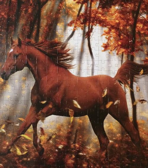 Lafayette Puzzle Factory, Title: Forest Enchantment, Photographer: Bob Langrish, Pieces: 300 (8+ years) Large size, Size: 18