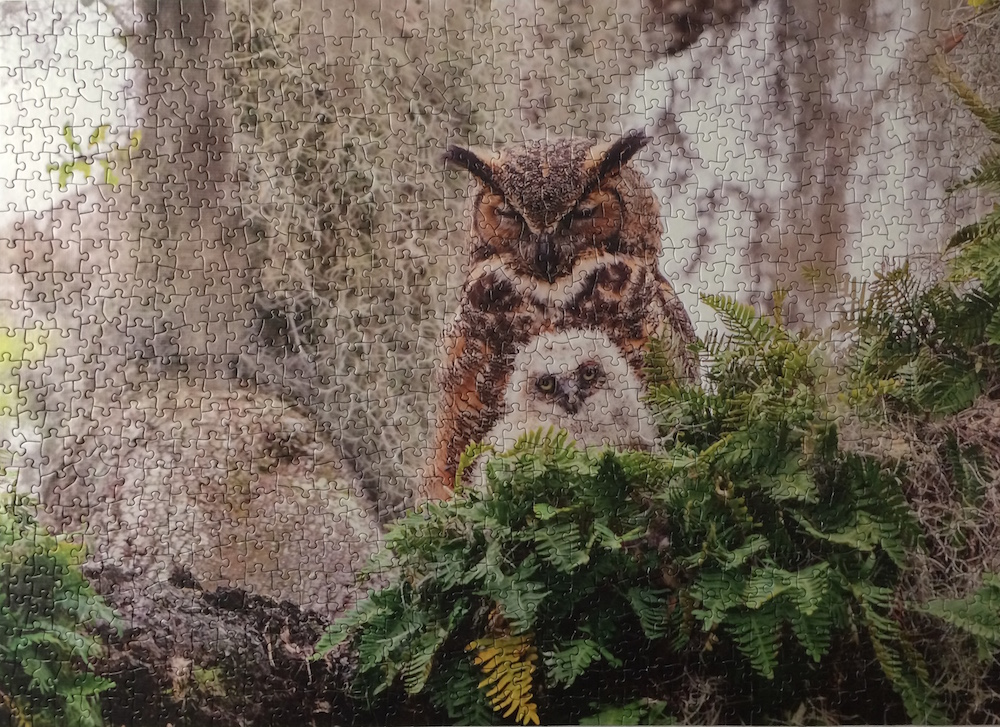 Brand: Cobble Hill Puzzle Company Title: Horned Owl Puzzle Artist: Simon Bolyn  Pieces: 1000 Size: 26.626