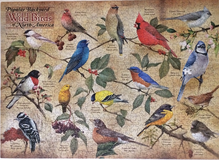 Brand: Cobble Hill Puzzle Company, Title: Wild Birds of North America, By: Catherine McClung Pieces: 1000 Poster Included, Size: 26.625