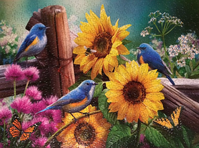 Brand: The Jigsaw Puzzle Factory, Title: Song Birds, Artist: Henry Petersen, Size: 18